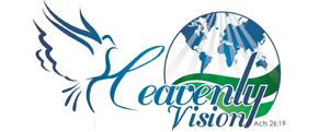 Vision Celestial Distrito 12
